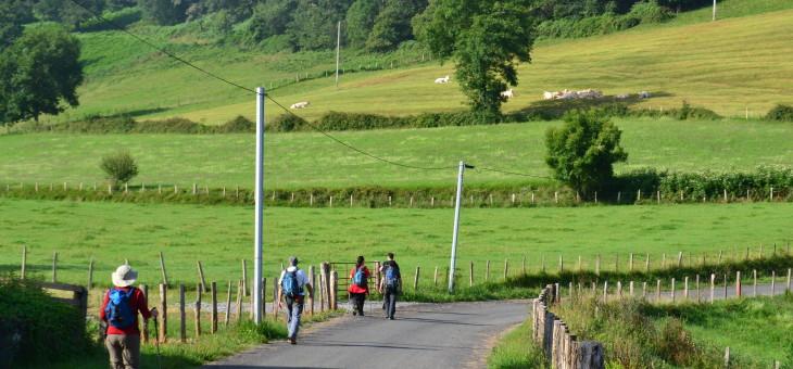 Sarria, S. Jean P. Port y Tui, principales puntos de partida para los peregrinos del Camino de Santiago.