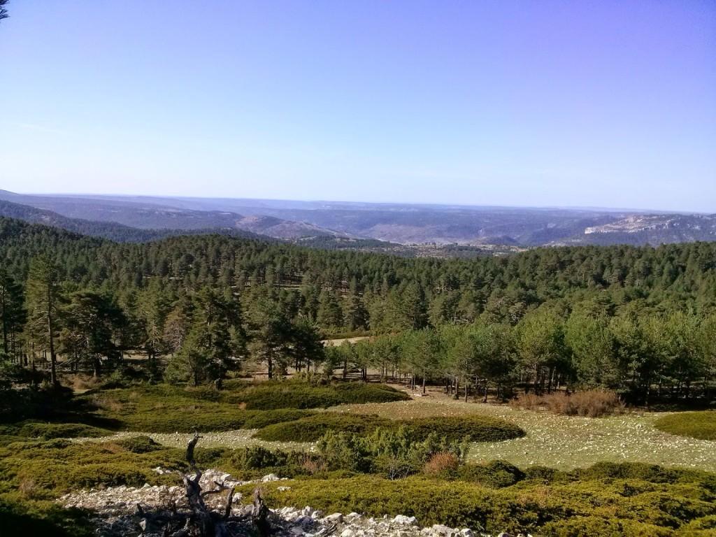 Sierra de Valdeminguete