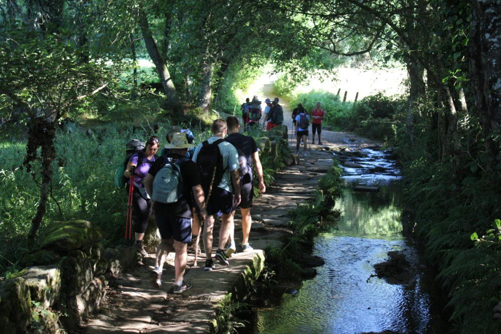 Camino Francés - Camino de Santiago
