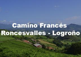 Camino organizado desde Roncesvalles