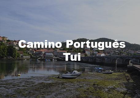 Camino Portugués Organizado